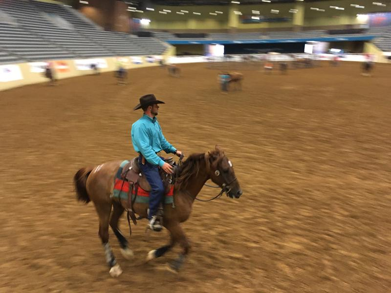 Trainer and Horse galloping on arena floor