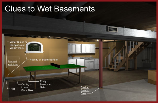Issues Of The Environment: Preventing Wet Basements | WEMU