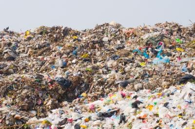 Piles of trash in a landfill.