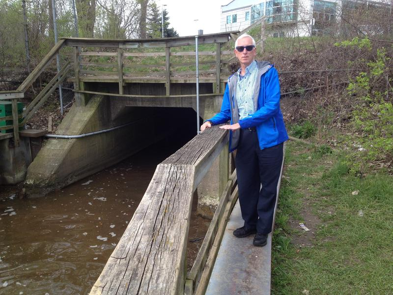 Dr. Larry Lemke at the outflow of Allen's Creek into the Huron River