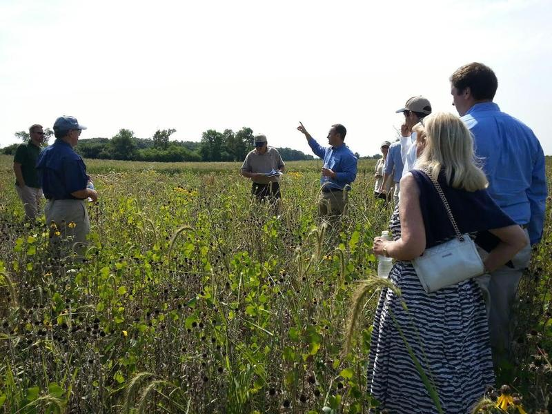 Michigan DNR members speak about the prairie.
