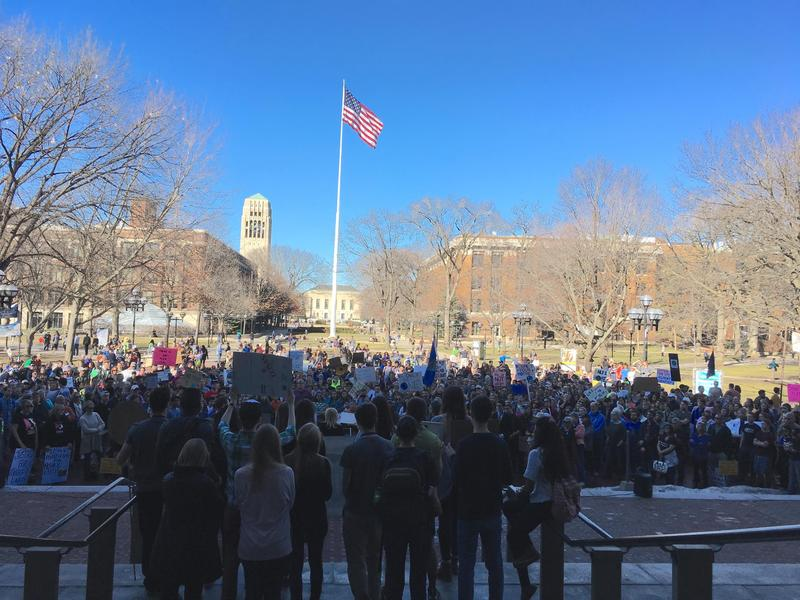 Climate Rally-Ann Arbor, February 18th, 2017