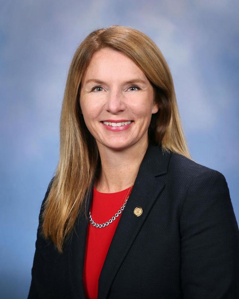 52nd District State Representative Donna Lasinski (D-Scio Township)