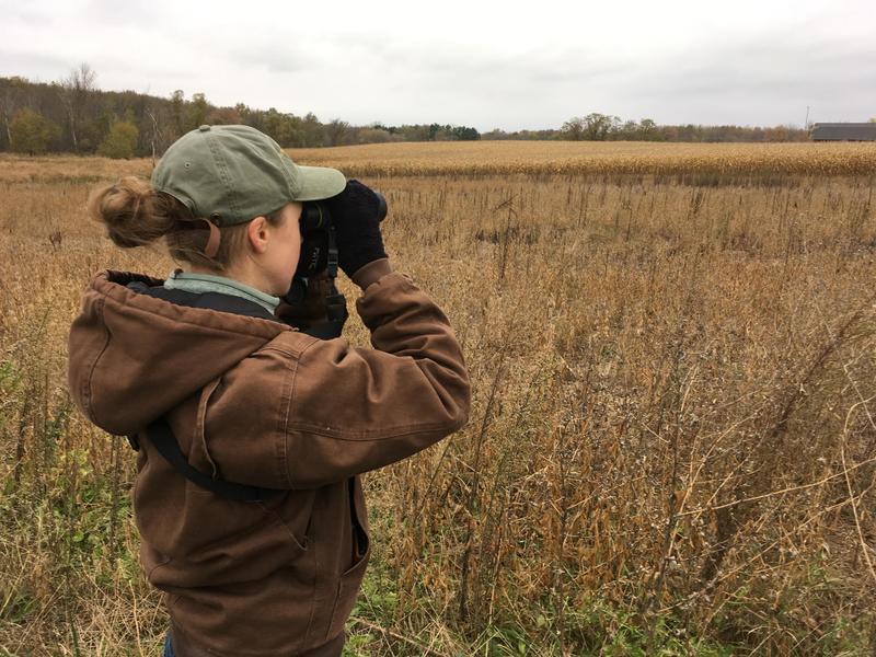 Rachel Roake, Michigan Audubon Conservation Coordinator