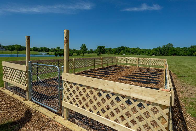 A Fresh Start community garden.