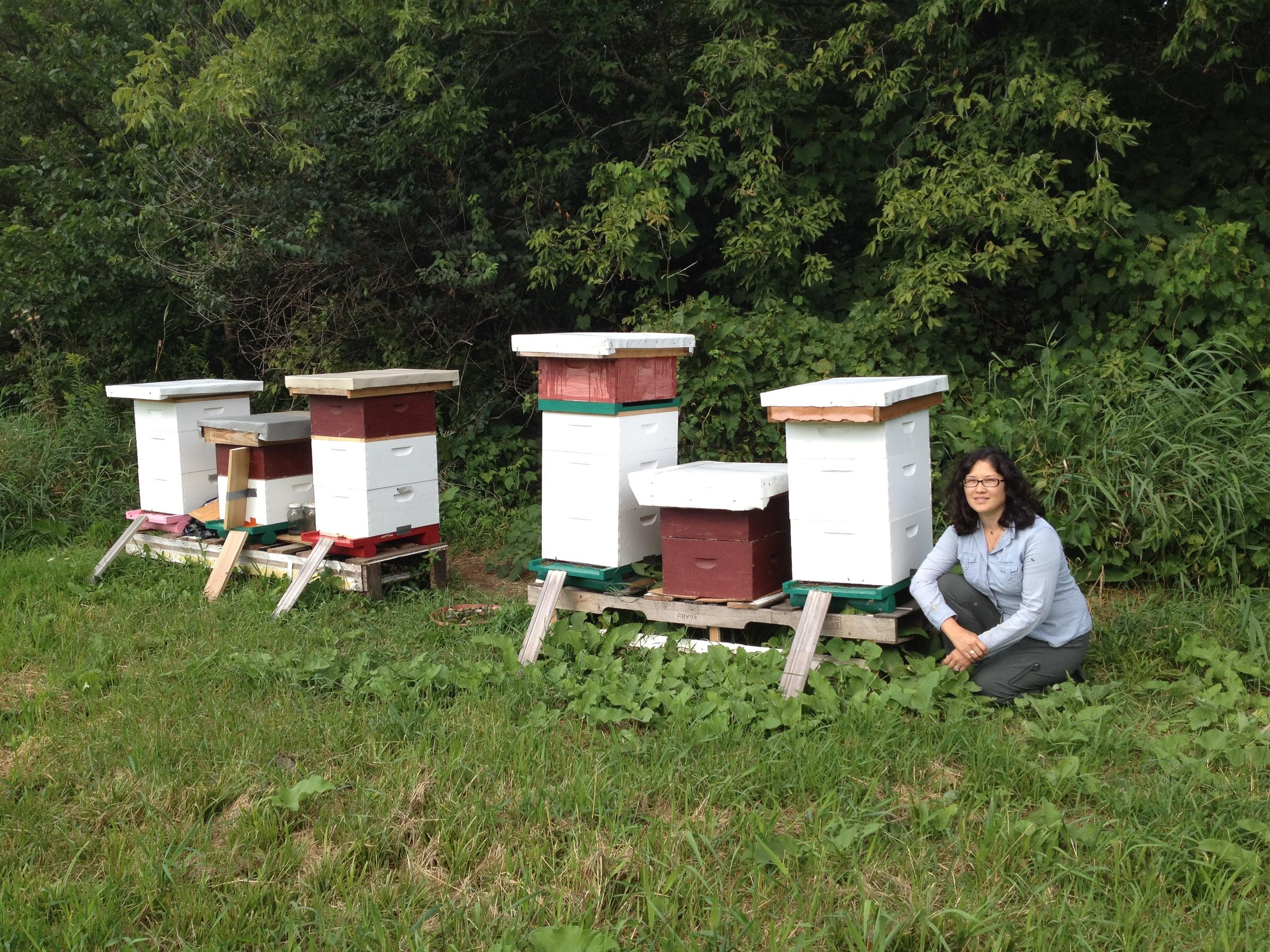 Germaine Smith At New Bee Apiaries