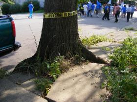 Garfield residents march down the street in an effort to draw attention to what they say are overgrown trees that are causing dangerous conditions.