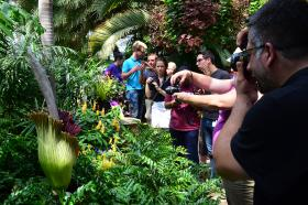 Spectators flocked to the Phipps Conservatory this week.