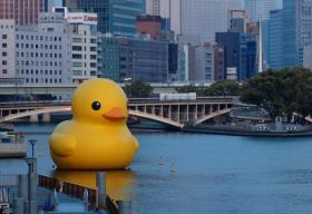 Artist Florentijn Hofman's giant floating rubber duck will make its way to Pittsburgh Friday as part of the International Festival of Firsts.