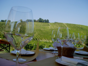 Vineyards offer a variety of ways to enjoy their wines be it through private tastings, spectacular views or a tour through the wine-making process