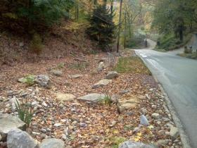 The bioswale on Hawthorne Road is built to look like a natural stream bed. It blends into the existing hillside.