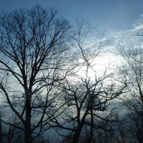 Fewer hours of sunlight is the biggest factor in the winter onset of Seasonal Affective Disorder.