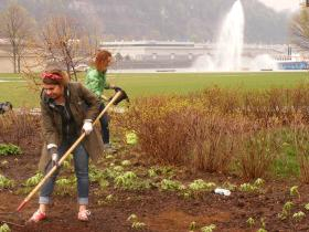Volunteers cleaned up Point State Park and planted shrubs and flowers that were native to the land during the French & Indian War.
