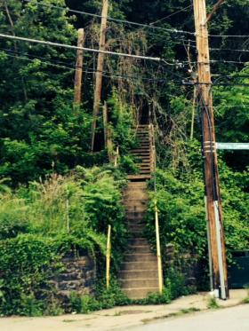 Just one of hundreds of flights of city steps that can be found throughout Pittsburgh.