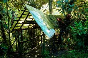 This roofing in Ecuador is a product of the Reuse Everything Institute. It's made from old plastic bottles.