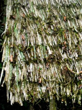 Strips of plastic soda bottles are being used to create thatching for roofs in developing countries.