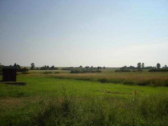 A field in Lesniowice