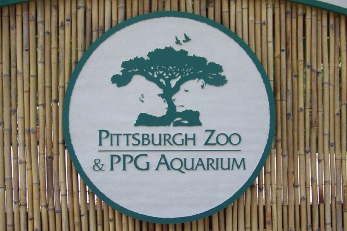 A baby gorilla was born at the Pittsburgh Zoo & PPG Aquarium on Friday.