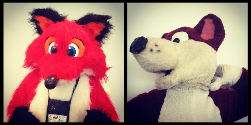 Left: Yappy Fox, of Florida. Right: Danny Dingo, from Ontario, Canada.