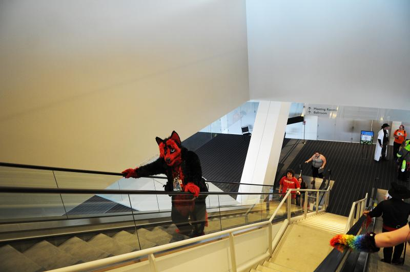 Fursuits often come with large, cartoonish feet, making traveling up and down staircases difficult. Many costumed furries use escalators or elevators instead.