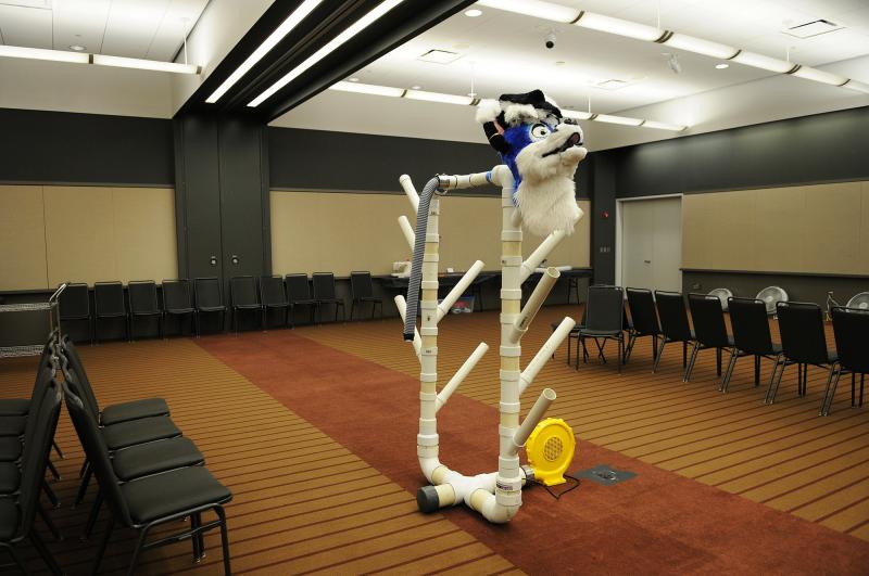 "A costume head rests in what's called a ""Headless Zone,"" an area where fursuiters, or furries in costume, can go to remove pieces of their costumes and cool down. Many fursuiters prefer not to reveal themselves out of costume, so the rooms offer privacy."