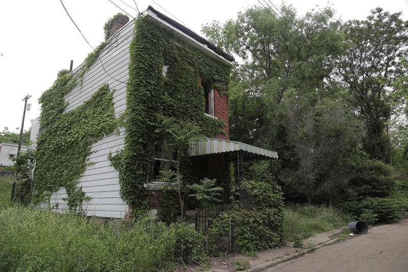 Plant life has overtaken much of a property on Garfield's Brown Way.