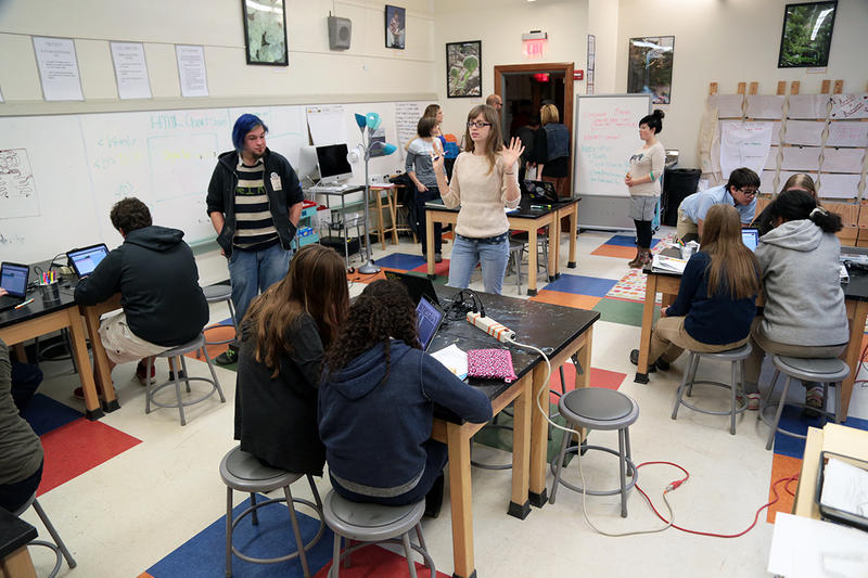 In most schools, class time is broken up by subject. But at the Environmental Charter School, for a few hours a week, science and art are taught as one. This year, the eighth grade classes are led by guest educators from Assemble.