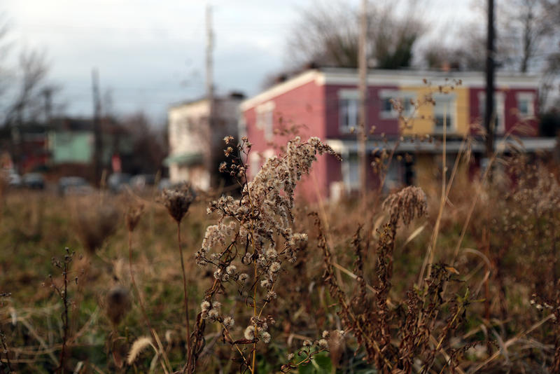About 1,700 people live in Larimer. Blocks are scored with empty lots and vacant houses. But the neighborhood is changing.