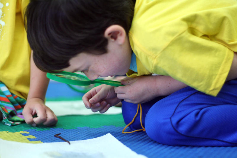 Freddy Goellner, 5, studies an earthworm under a magnifying glass as part of a sensory summer camp at the Carnegie Science Center hosted Wednesday, Aug. 12, 2015.