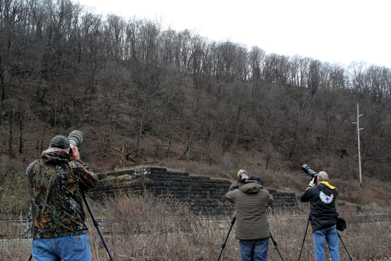 Photographers prepare for one of the eagles to fly overhead.