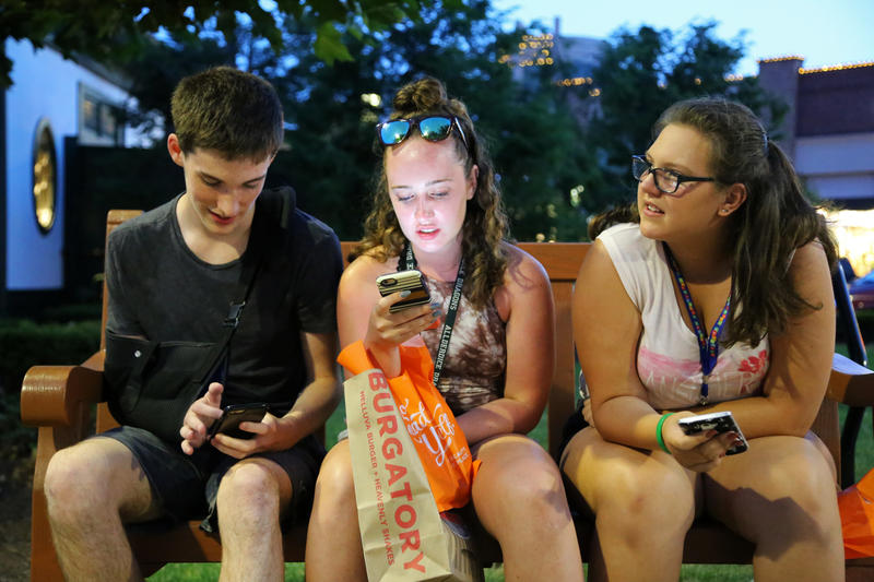 "Friends and classmates Kyle Fogerty, Lizzie Kohut-Kegarise and Harlee Bigelow, all 15, said they heard about Pokemon Go as soon as it came out. ""I don't really know what I'm doing yet, but it's fun to try,"" Fogerty said."