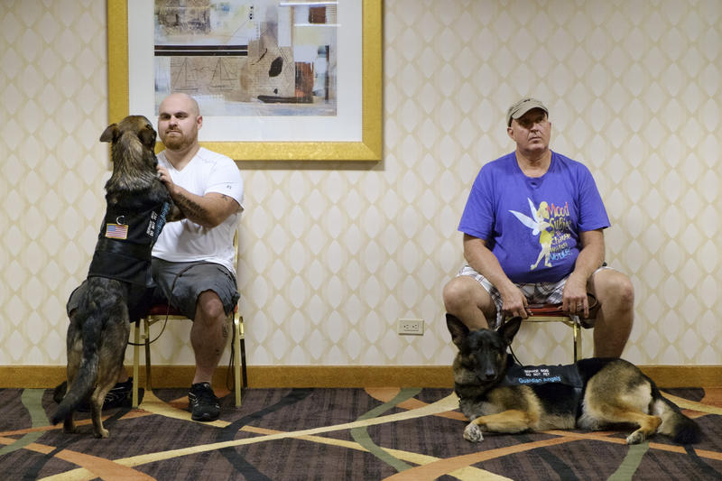 Mitchell Baldwin, of Harrisburg, interacts with his service dog Oliver while Larry Debar and Shiloh, of Homer City, listen to instructions during a training session in the Marriott Hotel Downtown on Friday, July 15, 2016.