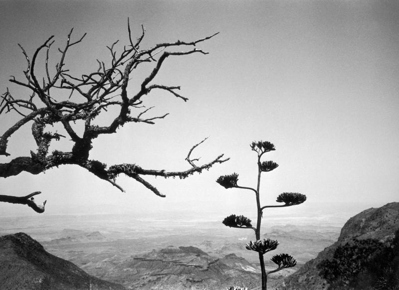 "Scenery at Big Bend Country, Texas, photographed as part of the ""America the Beautiful"" series in 1969."