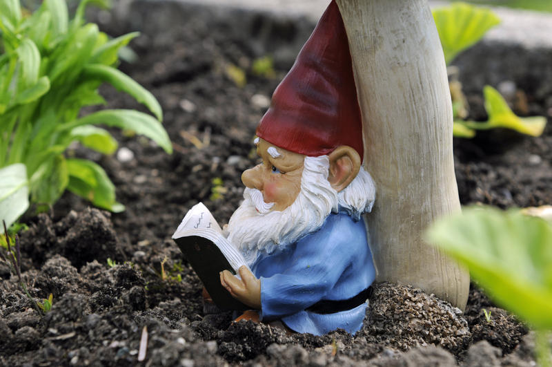 McLay: You Donu0027t Need An Officer To Report Your Missing Garden Gnome