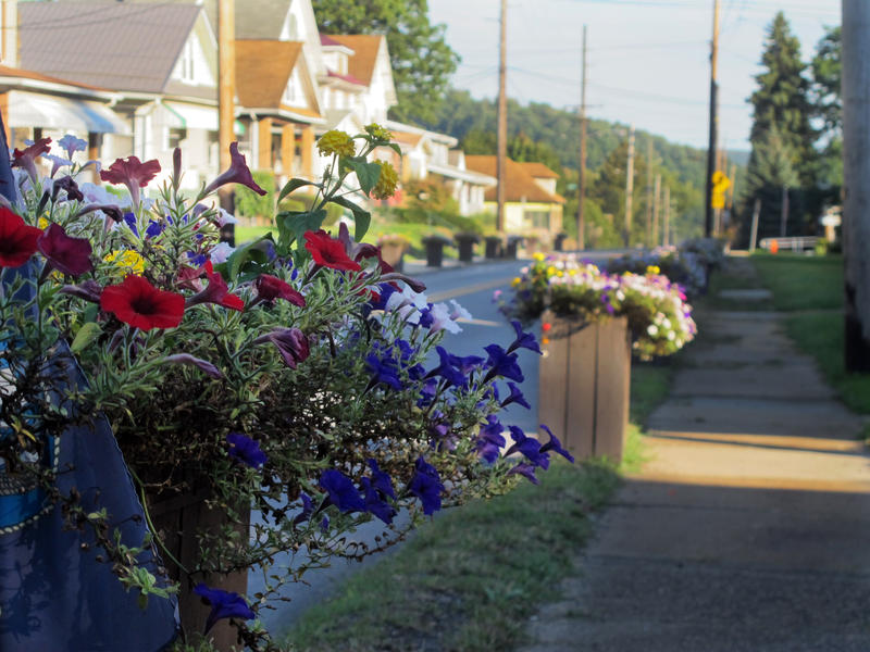Flower Boxes maintained by the Wes End Improvement Group line rout 56 in Johnstown.