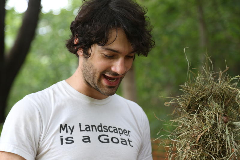 Steel City Grazers co-founder Doug Placais, 32, of Allentown, started the company with his wife, Carrie Pavlick, in 2015 after Tree Pittsburgh piloted a goat grazing program in Polish Hill.