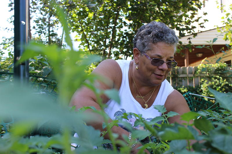 Homewood resident Zinna Scott picks ripe cherry tomatoes from the garden planted on the empty lot next to her house. After years of taking care of the property, she officially bought it in December.