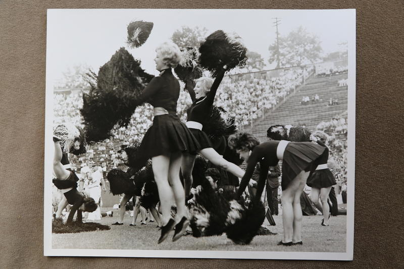 Steelerettes were an idea by RMJC Vice President William V. Day, who was also the Steelers' entertainment coordinator. The Steelers were having trouble selling tickets and Day belived the addition of cheerleaders would improve attendance.