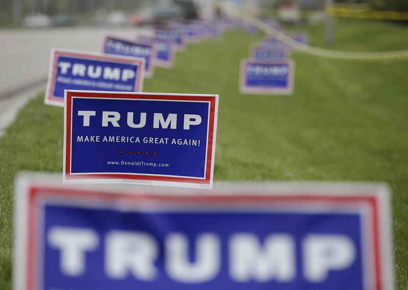 Campaign signs for President-elect Donald Trump dot the landscape.