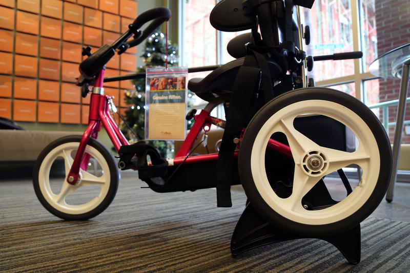 The individually customized Rifton tricycles offered through Variety provide portable rehabilitation therapy and mobility for children with compromised muscle tone, balance or spacial perception.