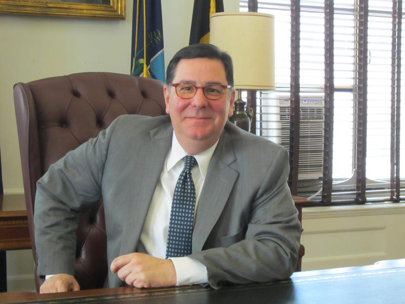 Pittsburgh Mayor Bill Peduto says an advisory panel will offer recommendations for how to move forward with restructuring the Pittsburgh Water and Sewer Authority, which could include the creation of a public-private entity.