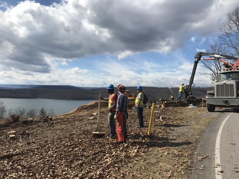 Sunoco Logistics crews clear trees for the Mariner East 2 pipeline at Raystown Lake in Huntingdon County.