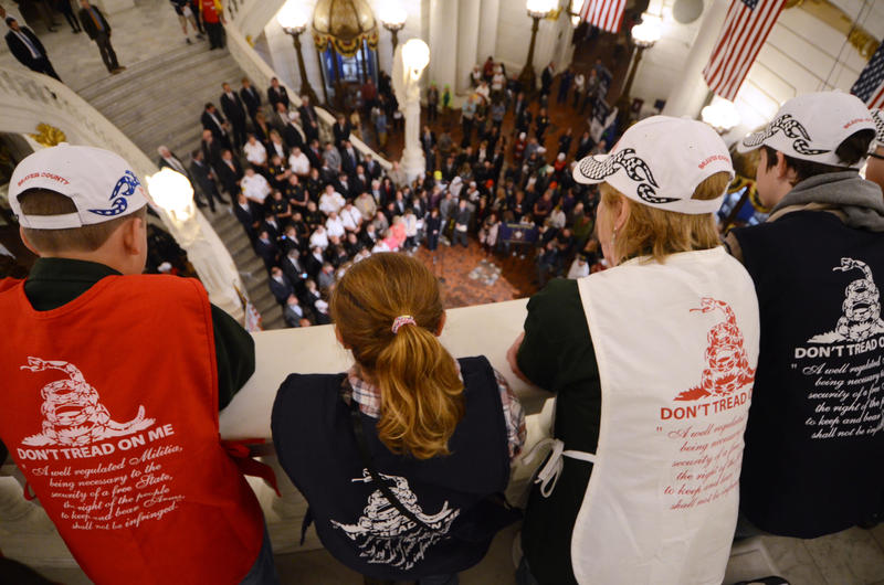 People watch as supporters of gun rights crowd the Capitol rotunda in Harrisburg, Pa., on Monday, May 22, 2017, pushing for an agenda that includes looser rules for carrying concealed weapons.