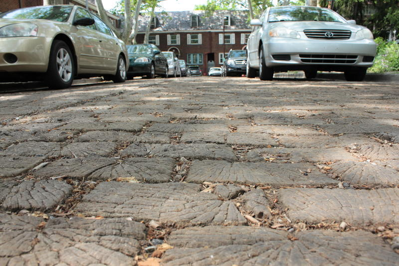 Roslyn Place in Shadyside is one of the country's last wooden streets. It was recently designated a City Historic Site, which protects it from alterations. Philadelphia's wooden street, S. Camac, is currently covered with asphalt.