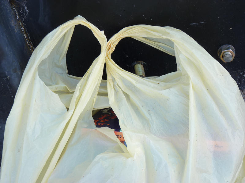Republican lawmakers hope to pass legislation that would ban plastic bag taxes.