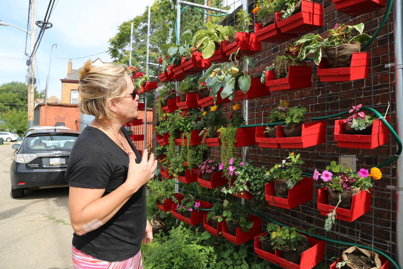 A vertical planting system provides flowers and herbs for Latham St. Commons in the Bloomfield Garfield area. Co-director Kristin Hughs said it also invites passersby to check out the living learning community.