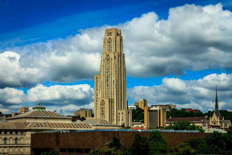 Since January 2016, graduate students at the University of Pittsburgh have been campaigning, in coordination with the United Steelworkers, to form their own union.