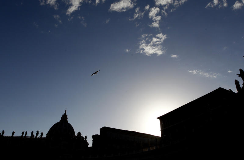 The St. Peter's Basilica is silhouetted at dusk, at the Vatican, Thursday, June 29, 2017. The Roman Catholic Diocese of Altoona-Johnstown has created a board to oversee child-sex abuse cases.