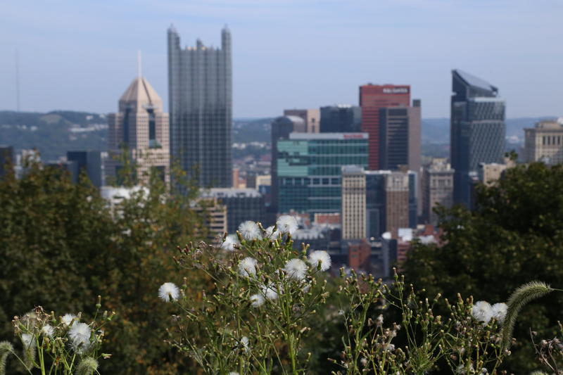 The city of Pittsburgh wants to reduce emissions and improve the quality of its enviornment by 2030, as outlined by a number of waste-reducing goals.