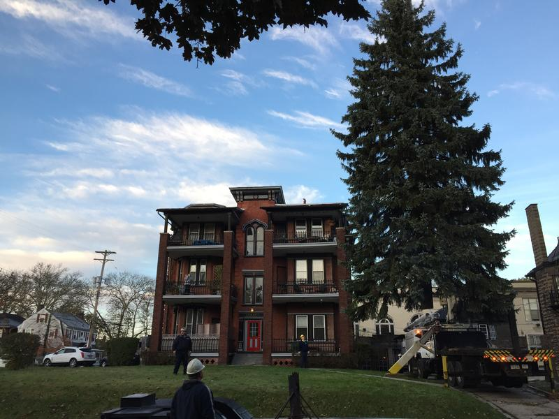 Public works forrestry crews remove this year's holiday tree from outside of John Zitelli's Regent Square home.